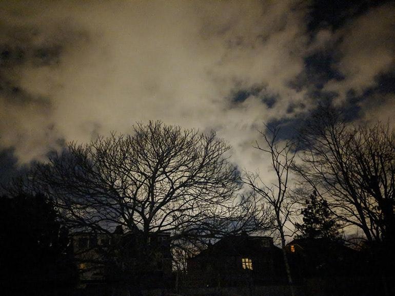 Google-Pixel-2-camera-sample-nighttime-trees