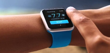 Apple Watch sales buoyant despite lack of new model